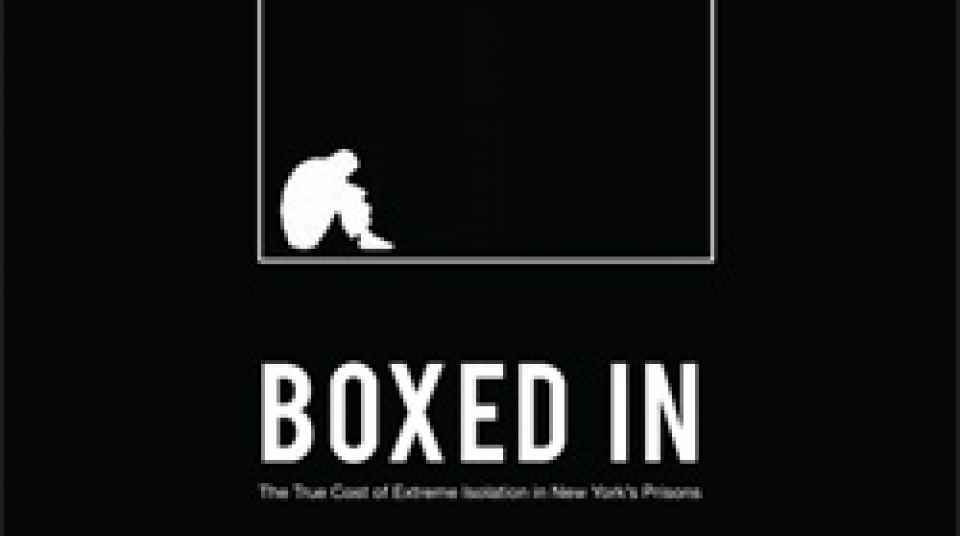 Report Boxed In The True Cost Of Extreme Isolation In New York S